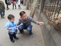 The Best Places for Families in Chengdu